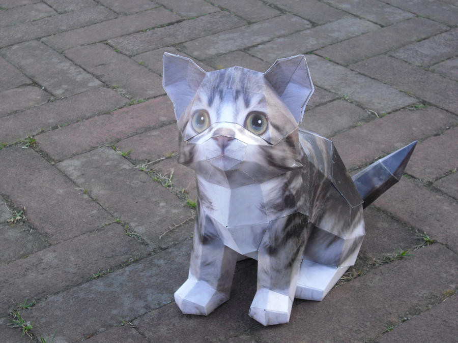 Cat papercraft by timbauer92 on deviantart for Cat art and craft