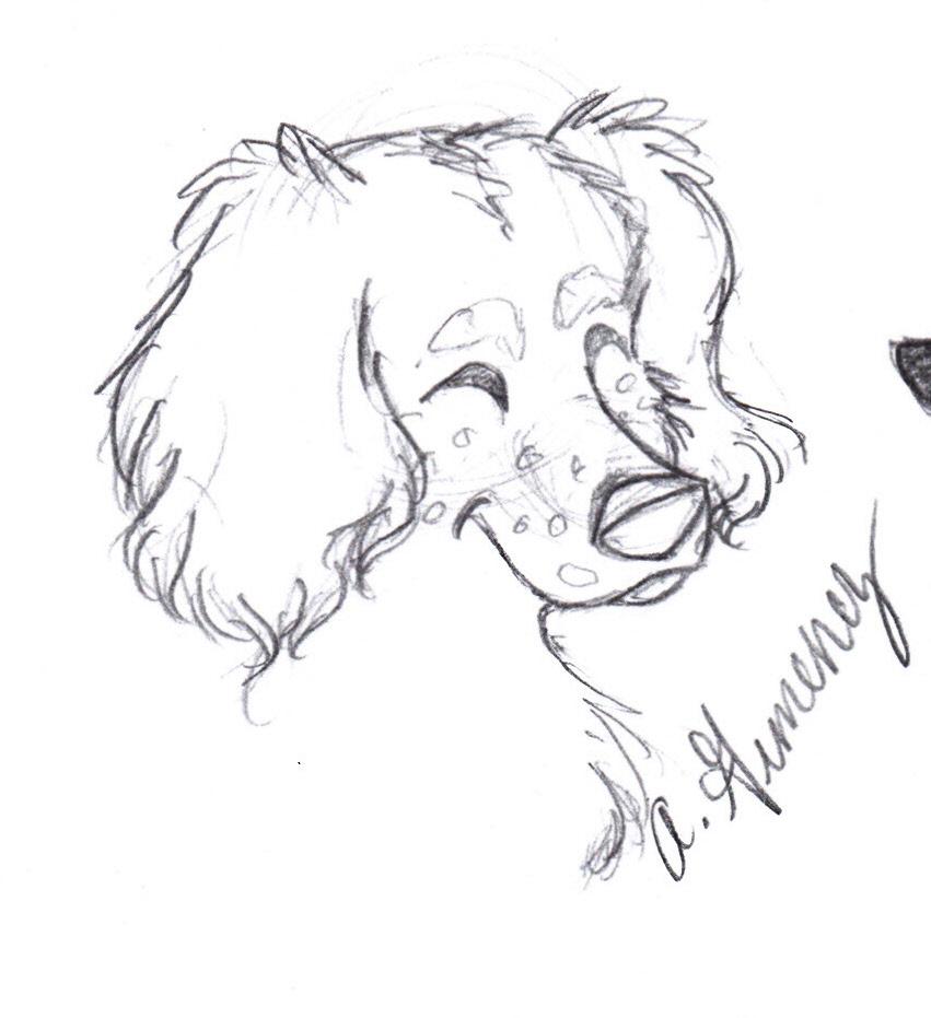 Line Drawing Dachshund : Dachshund sketch by amandamoon on deviantart