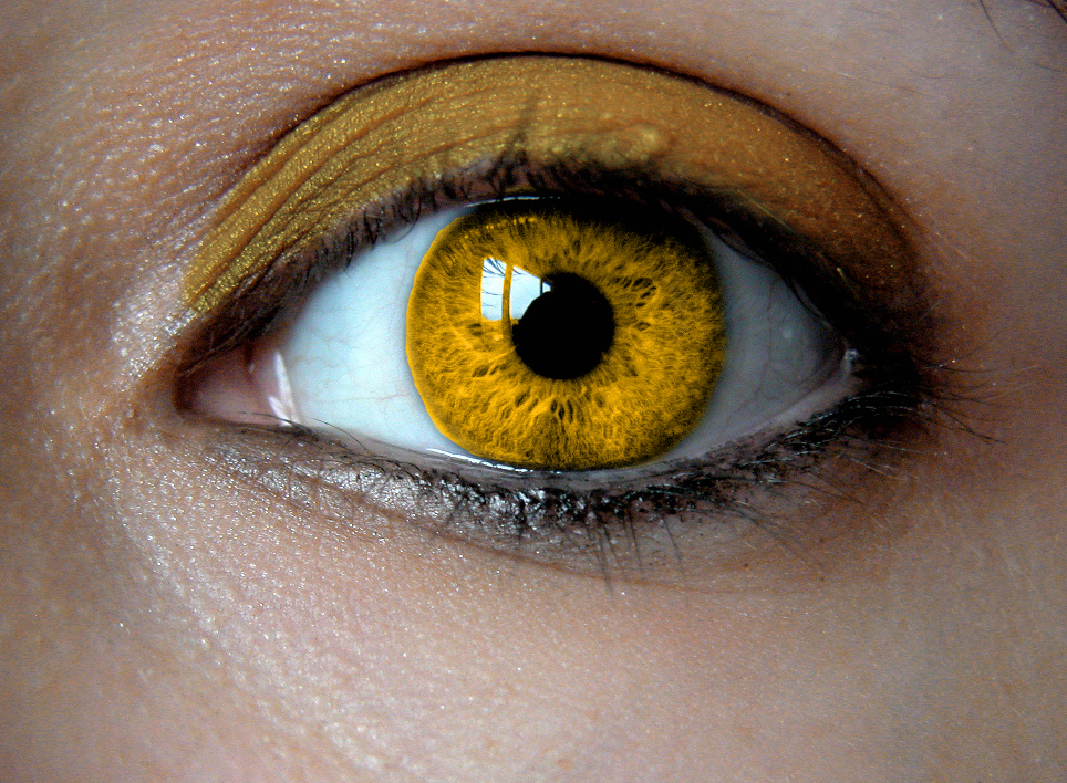 Birthstone Eye: Citrine by Padfoot7411 on DeviantArt