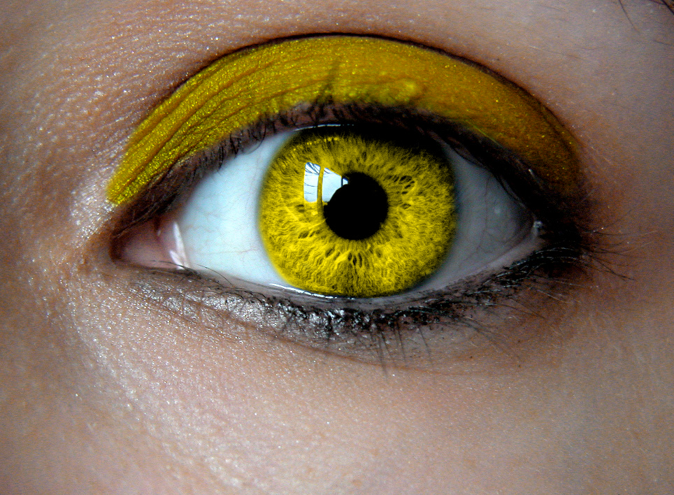 yellow eyes - photo #15