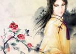 APH-China Rose