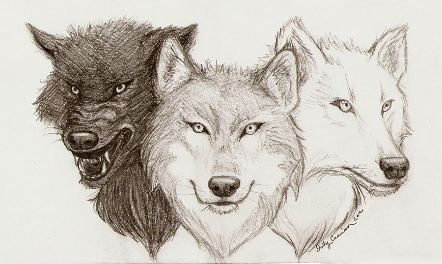 Lineart Wolf Tattoo : Wolf tattoo lineart by emilycammisa on deviantart