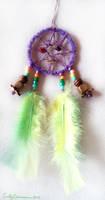 Playful Spirit Dreamcatcher by EmilyCammisa