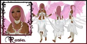 Rosiel Character Sheet by EmilyCammisa