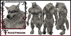 Frostmoon Wolf Form Character Sheet