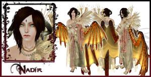 Nadir Dragon Guardian Character Sheet