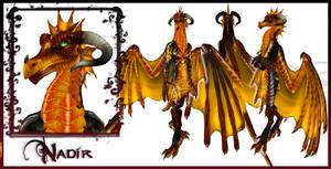 Nadir Dragon Form Character Sheet