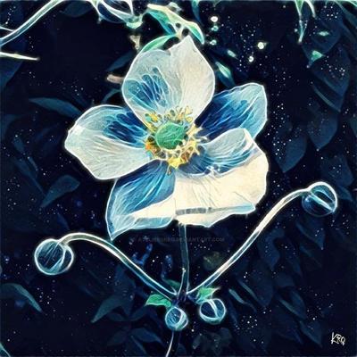 Human flower by atelierskro