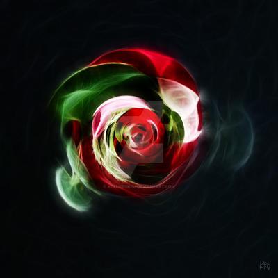 Italian rose by atelierskro