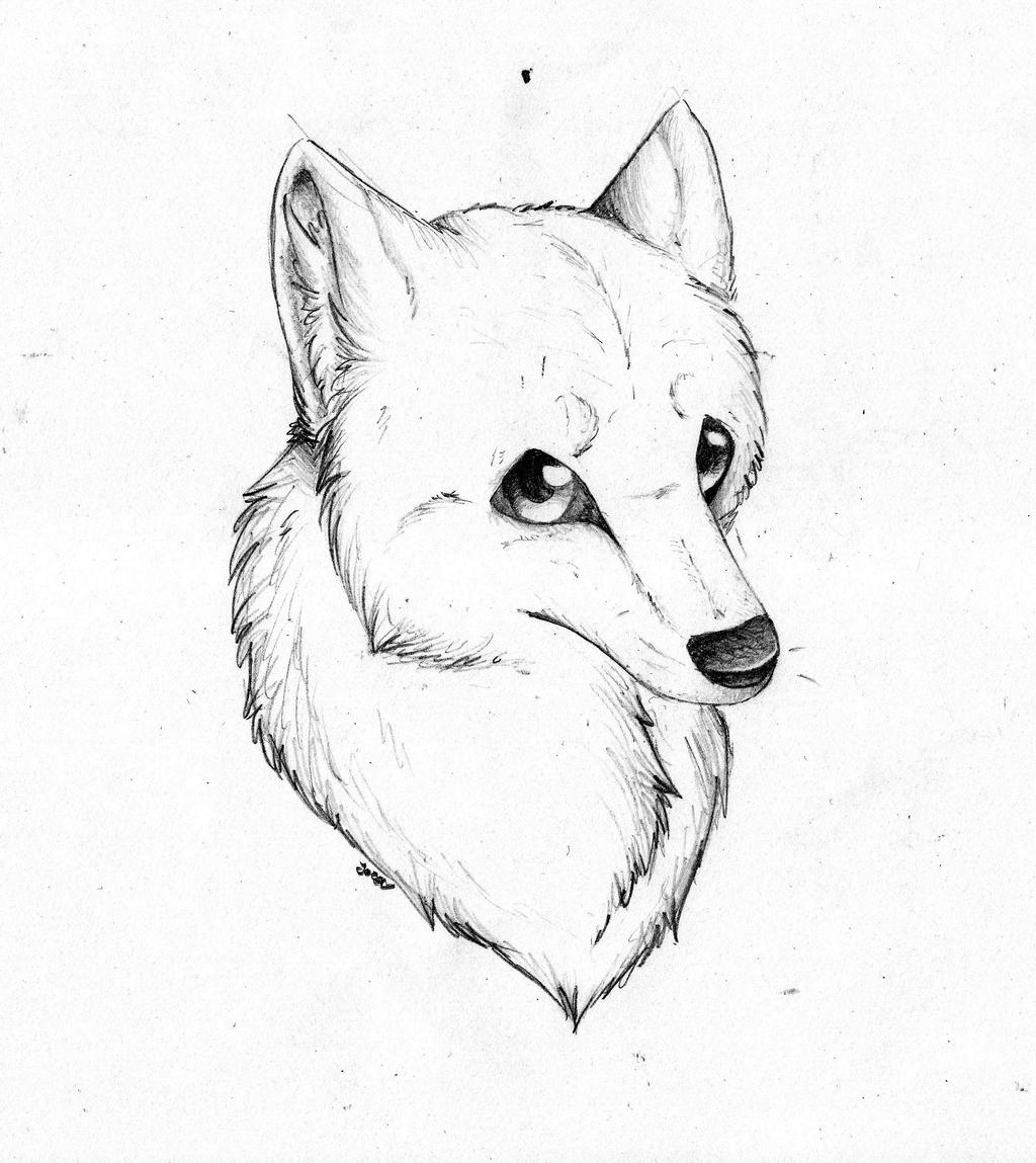 wolf mouth how to draw