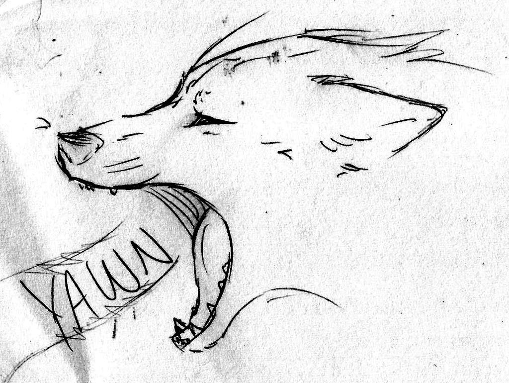 crying sad wolf drawings pictures to pin on pinterest