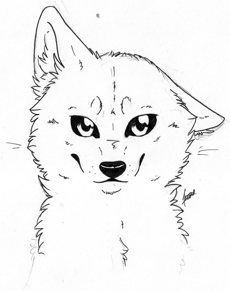 Line Drawing Wolf Face : Wolf head by pandoraswolf on deviantart