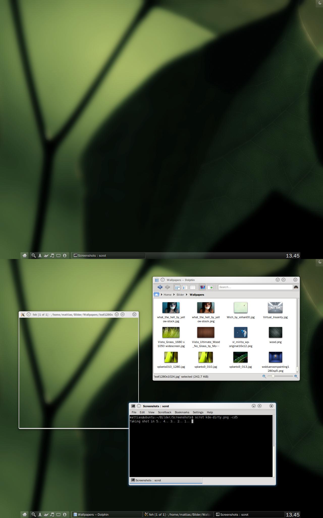 Ubuntu sKreenshot 2010-01-20