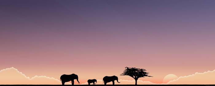 The Elephants. Wide, blue.