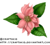 Poinsettia 2 - Pink by Craftykid