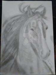 Horse draw