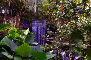 Waterfall by JasonGalterio