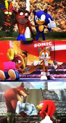 Team Bandicoot and Team Sonic by NinjawsGaiden