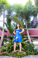 Nyan Cat inspired Cosplay Dress by HoodedWoman