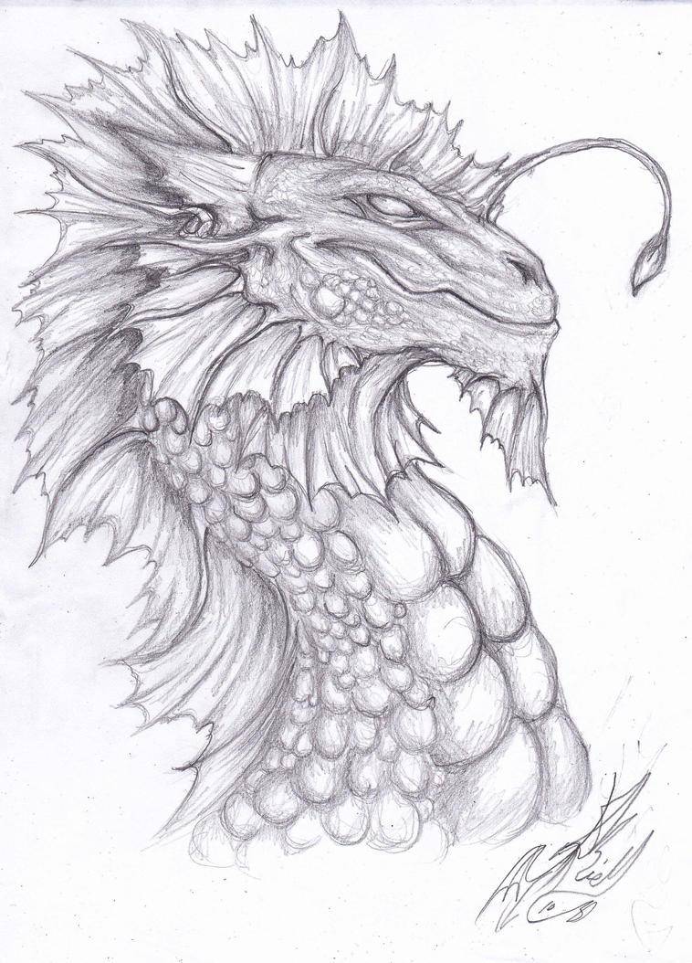 Sea Dragon By Somnium Draco On DeviantArt