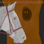 Nervus Grey Horse At Night by Deede25