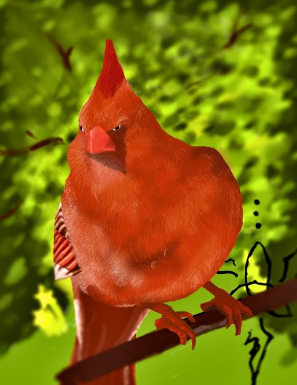 The Bird!