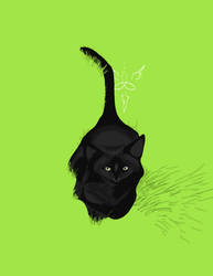 WIP Blackcat