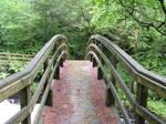 ttwm-stock Wooden Bridge 2