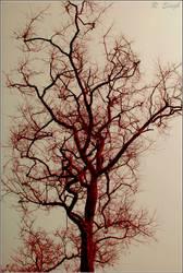nervous system by strangerinthecrowd