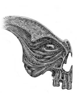 2008 Drawing Updated SKULL