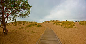 Sand Dunes from Yyteri