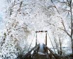 Whiteout Bridge