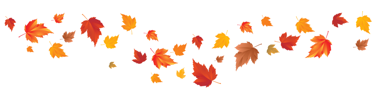 floating image of leaves