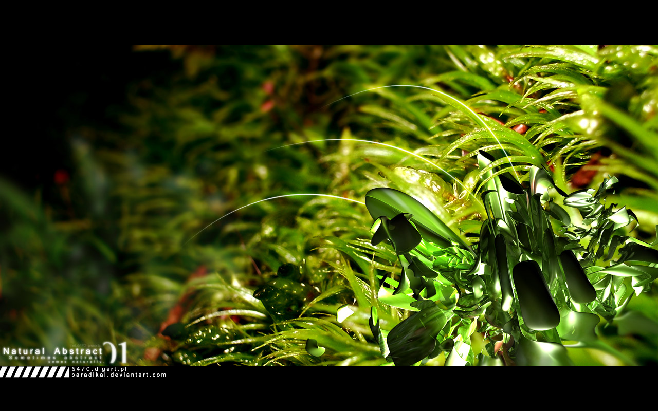 Natural Abstract 01 by paradikal