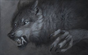 Werewolf Grisaille by sarahfinnigan