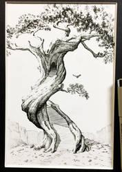 Tree with Doorway by sarahfinnigan