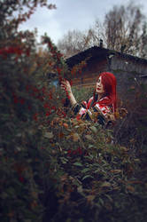Red garden by MarionetteTheatre