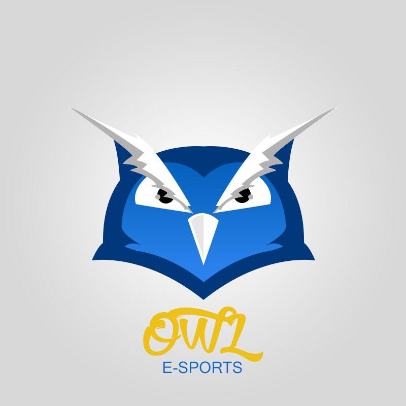 Owl E-Sports by fvelazco