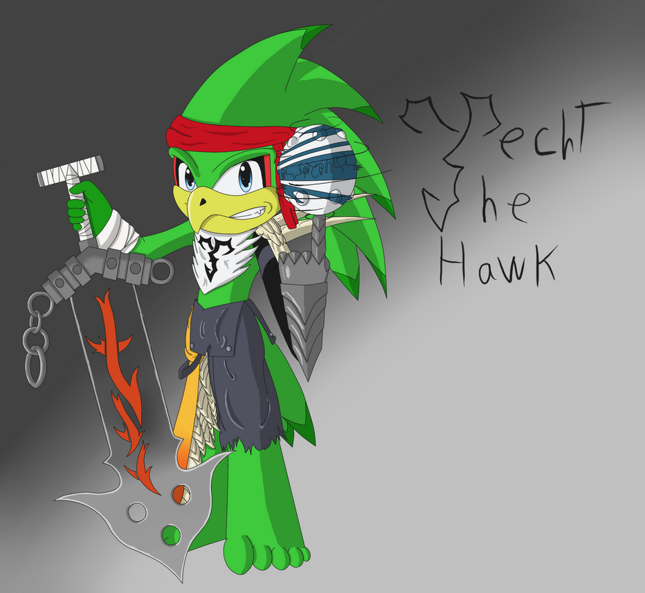 Jecht the hawk by Dield
