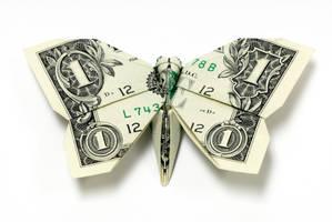 New One Dollar Butterfly by orudorumagi11