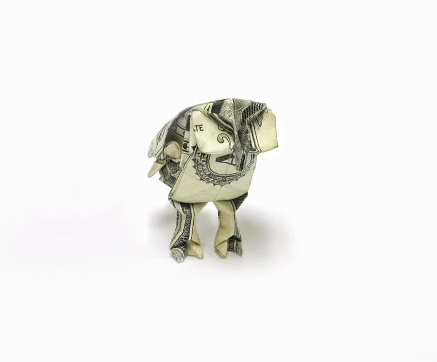 One Dollar Barn Owl by orudorumagi11