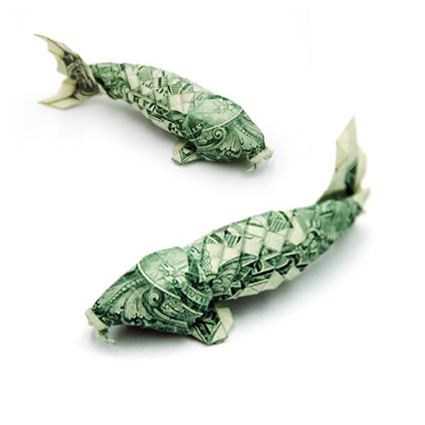 dollar kois by orudorumagi11