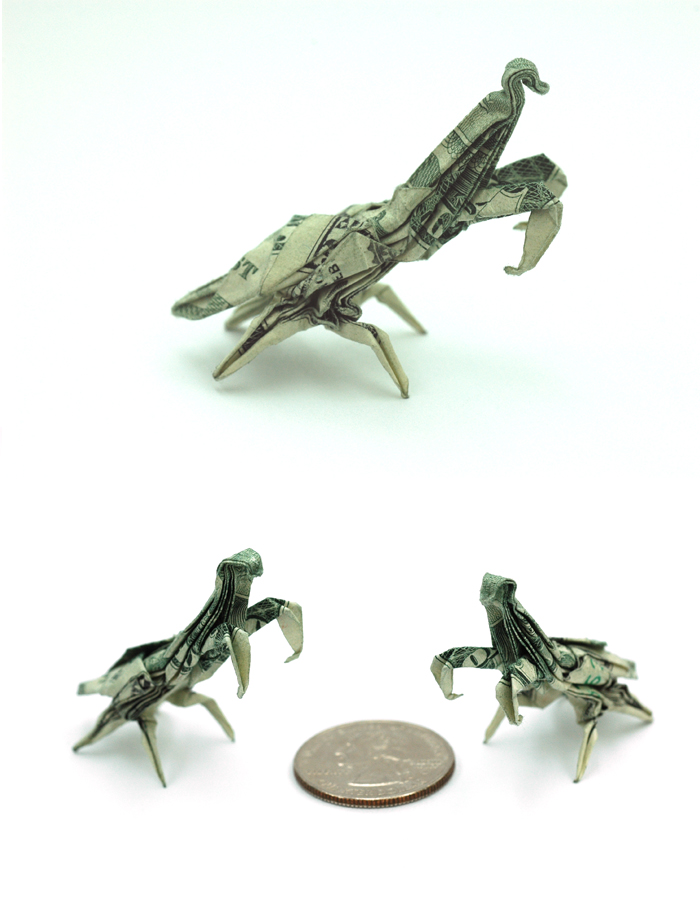 One Dollar Praying Mantis by orudorumagi11