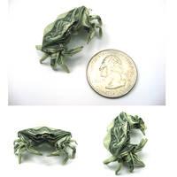 Dollar Crab by orudorumagi11