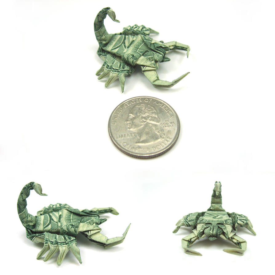 New pics. Dollar Scorpion by orudorumagi11