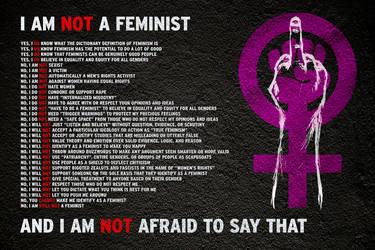I Am NOT A Feminist by brentcherry