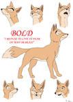 Bold Character Sheet
