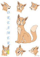 Dreamer Character Sheet by silenceangel