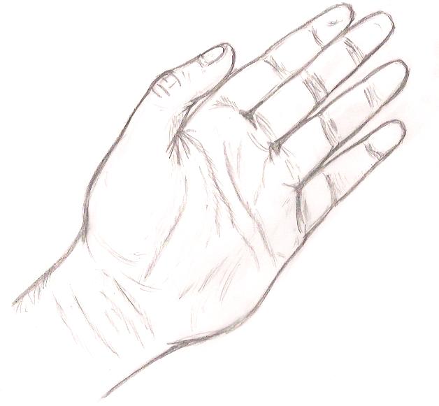 Hand Sketch By Ikarithehedgehog On Deviantart Create digital artwork to share online and export to popular image formats jpeg, png, svg, and pdf. hand sketch by ikarithehedgehog on