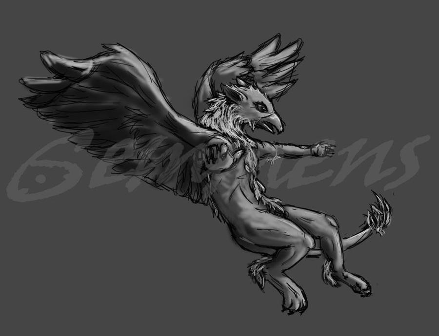 Griffin type thing by CharlieK-33